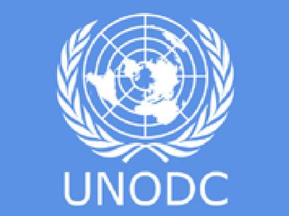 ¡ÚLTIMA HORA! – Nuevas declaraciones tras la comparecencia de Uruguay en la Reunión Anual de la Comisión de Estupefacientes de Naciones Unidas