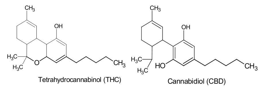 Een THC- en CBD-molecuul. Hun zeer grote overeenkomst is duidelijk te zien