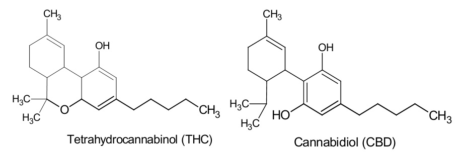 The THC and CBD molecules, showing their extremely close resemblance