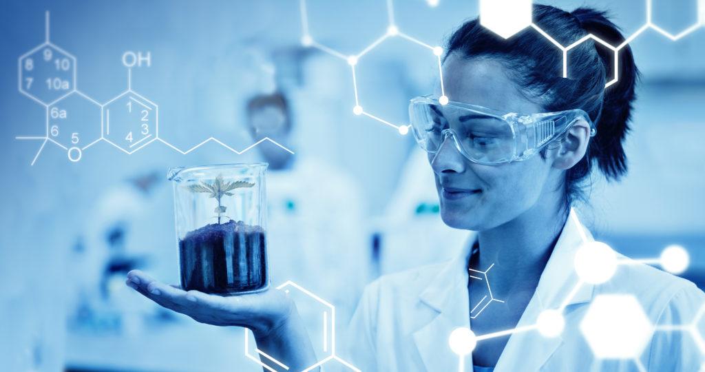Wissenschaft der Cannabinoide 101: Cannabinol