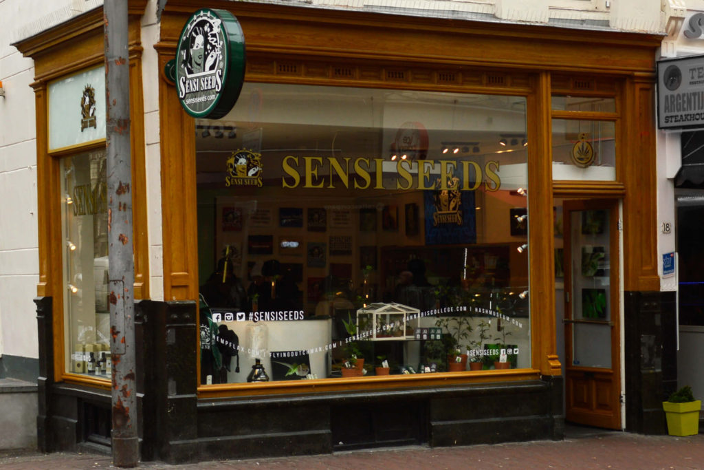 Sensi Seeds - John Sinclair