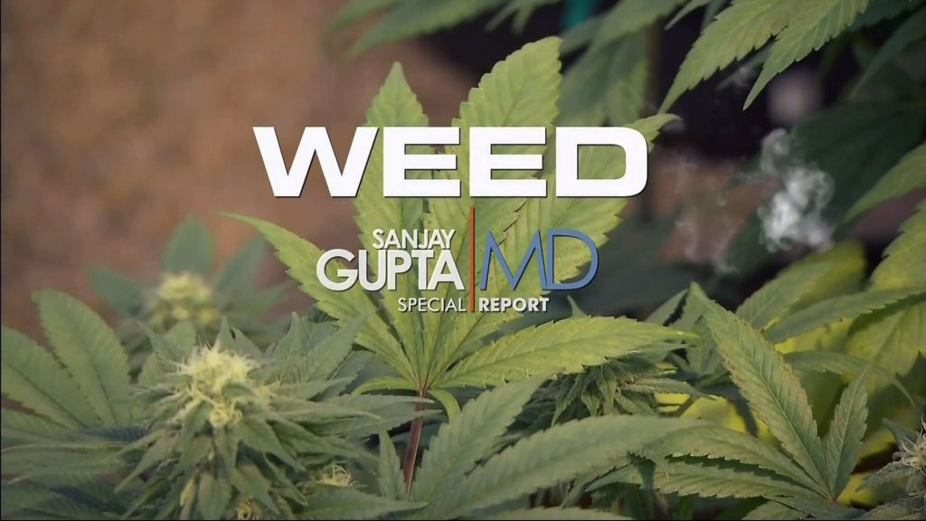"A photograph of a cannabis plant and the title ""WEED"" written in large white letters. Below that is the name Sanjay Gupta next to a orange line and the words ""MD special report""."