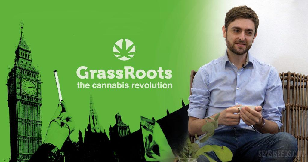 """Póster de la película Grass Roots. La ciudad de Londres aparece representada en el fondo en una silueta verde con la torre del reloj Big Ben claramente visible. Una mano sujeta un porro y las palabras """"GrassRoots the cannabis revolution"""" están enmarcadas en el centro. Un logo de cannabis aparece encima del título. A la derecha de esta imagen, hay una fotografía de un joven, Clark French, sentado sujetando una taza de té."""