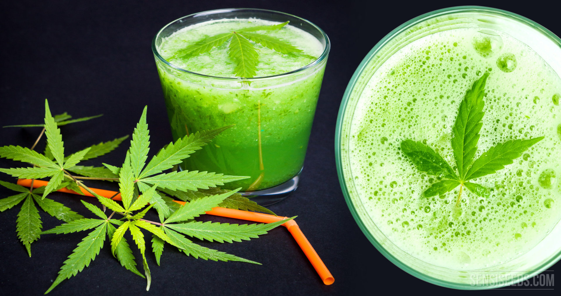 How Exactly Does Cannabis Juice Work?
