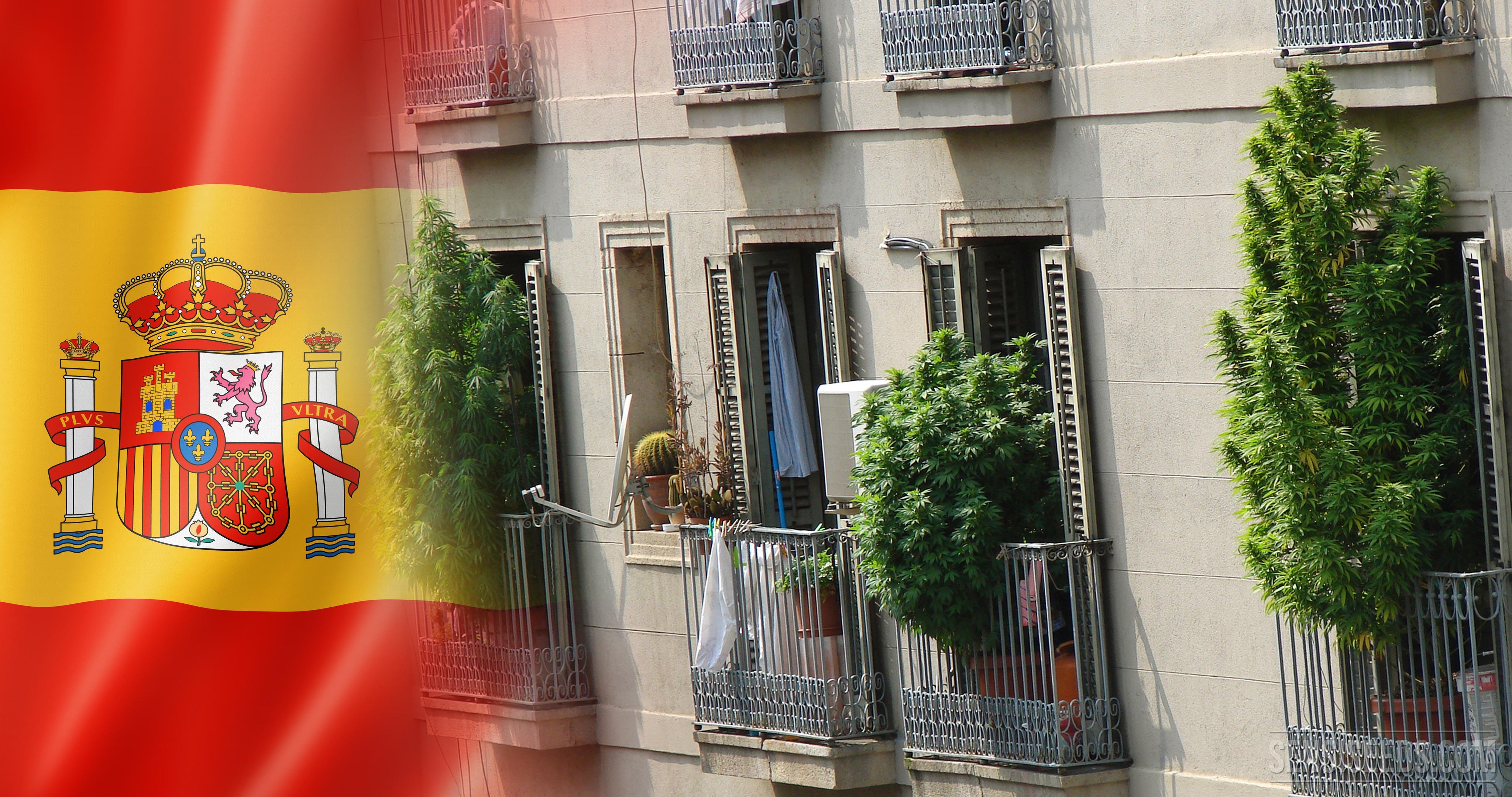 Cannabis In Spanien