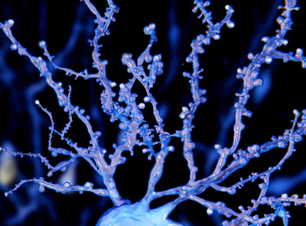 Eine digitale Wiedergabe eines Hippocampus-Neurons, hell eingefärbt, mit mehrfachen Verzweigungen und Kügelchen.