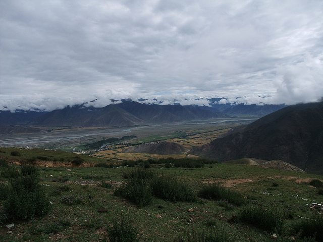 06 - Cannabis is reportedly cultivated in the Kyi Chu River valley south of Lhasa (© So_P)
