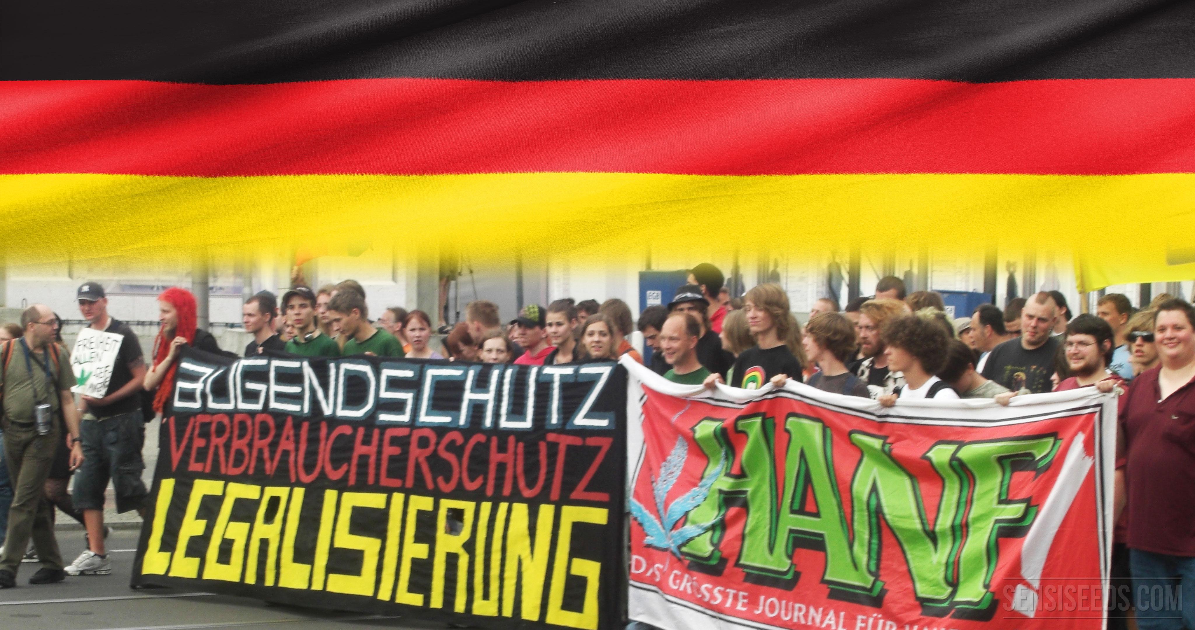 Le cannabis en Allemagne - Blog Sensi Seeds