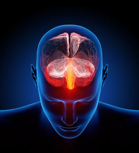 L'inflammation des tissus nerveux est le principal symptôme de la SEP (© Ars Electronica)