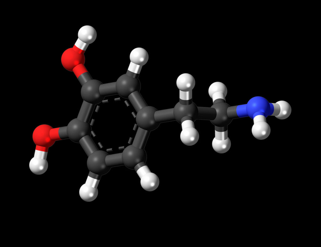 A ball-and-stick model of the dopamine molecule, a neurotransmitter that affects the brain's reward and pleasure centres. It features a catechol structure with an amine group attached via an ethyl chain. Colours are used to represent it's compounds: carbon, hydrogen, oxygen, and nitrogen.