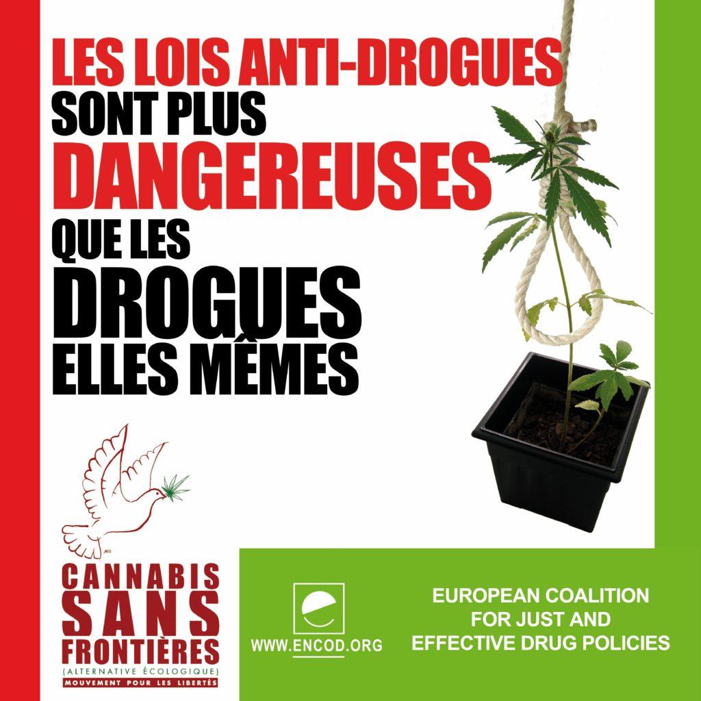Situación legal del cannabis en Francia - una visión general