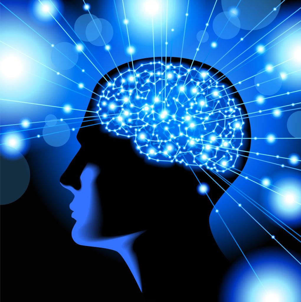 Illustration graphique montrant la différence entre un cerveau normal et un cerveau affecté par la maladie d'Alzheimer. Sur la moitié représentant l'Alzheimer, on voit une rétraction de l'hippocampe et du cortex cérébral.