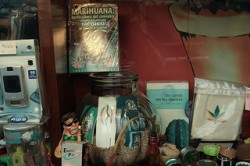 Spain now has hundreds of cannabis social clubs, particularly in Catalonia and the Basque region (Nicolas Vigier)