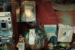 L'Espagne compte désormais des centaines de clubs sociaux de cannabis, en particulier en Catalogne et dans le Pays basque espagnol (Nicolas Vigier)