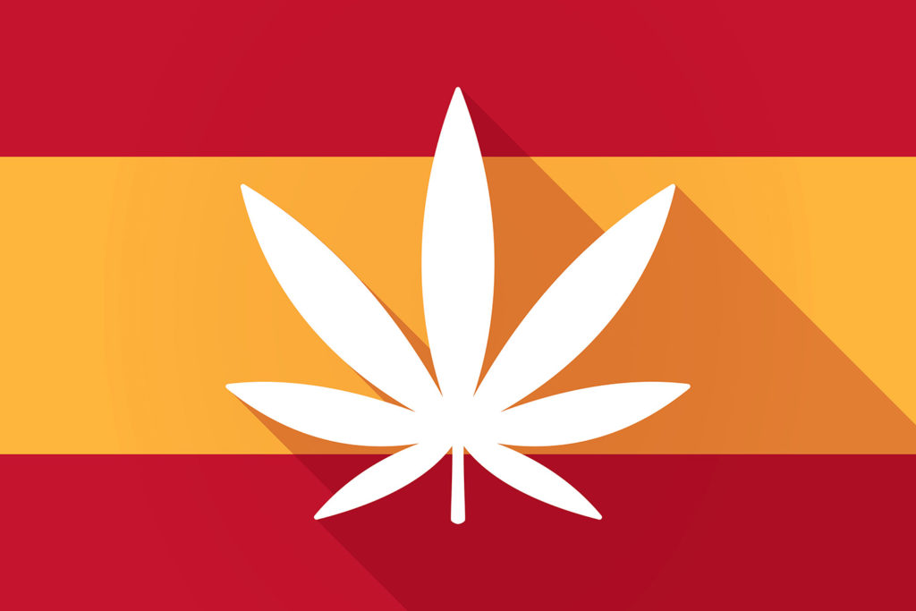 Cannabis is by far the most consumed recreational drug in Spain