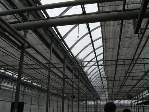 Large greenhouses may be equipped with automated curtain systems which block out all light in moments (© umass.edu)