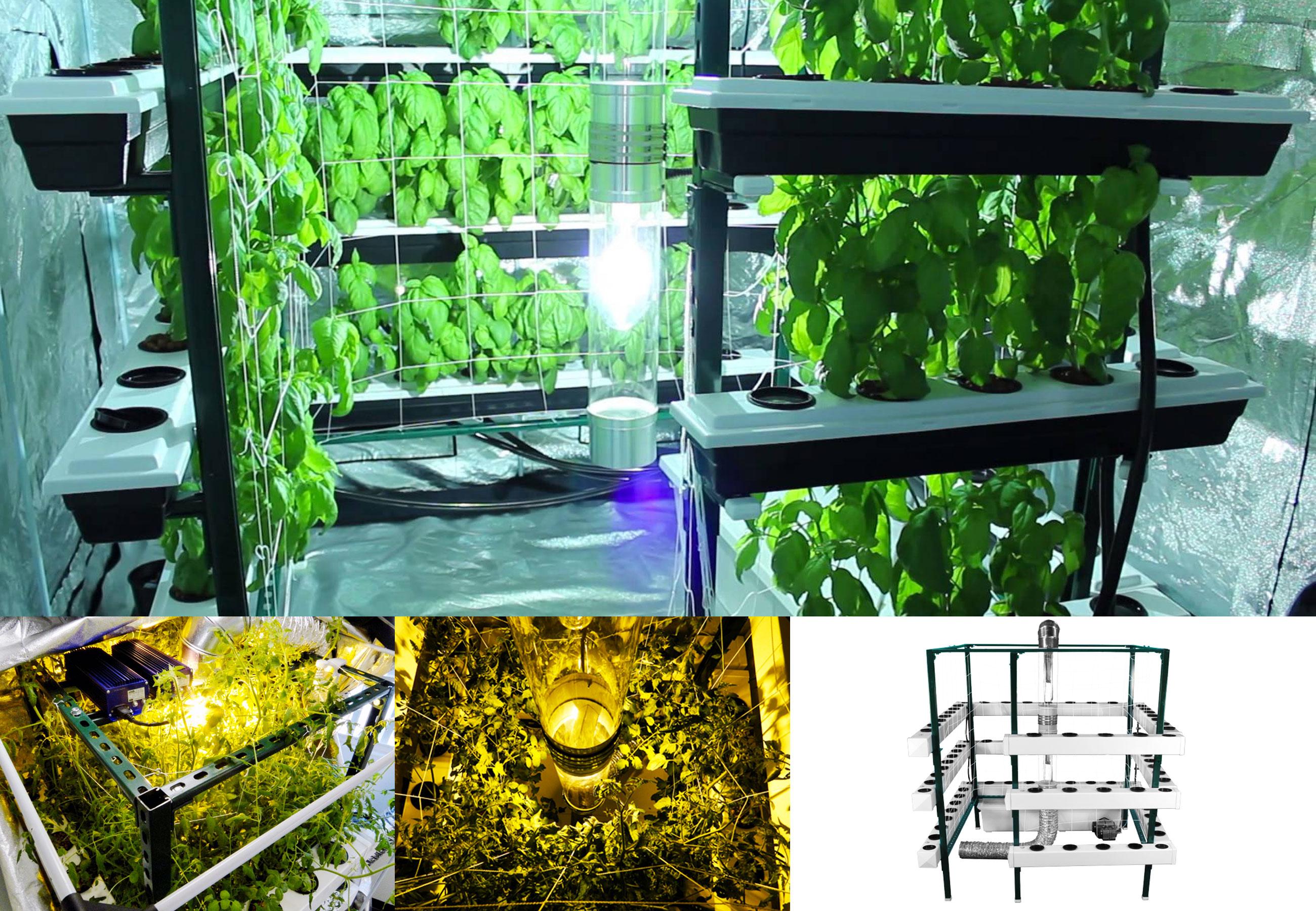10 Astuces Pour Optimiser Votre Espace De Culture De Cannabis Sensi Seeds