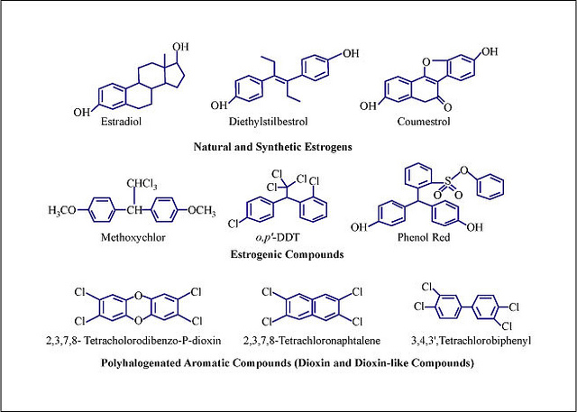 Compuestos estrogénicos. Compuestos aromáticos polihalogenados (dioxinas y similares a las dioxinas) (©Mitopencourseware)