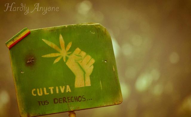 Alle personen hebben het recht om vrijelijk te beslissen wat ze consumeren (©Colectivo desde el 12)