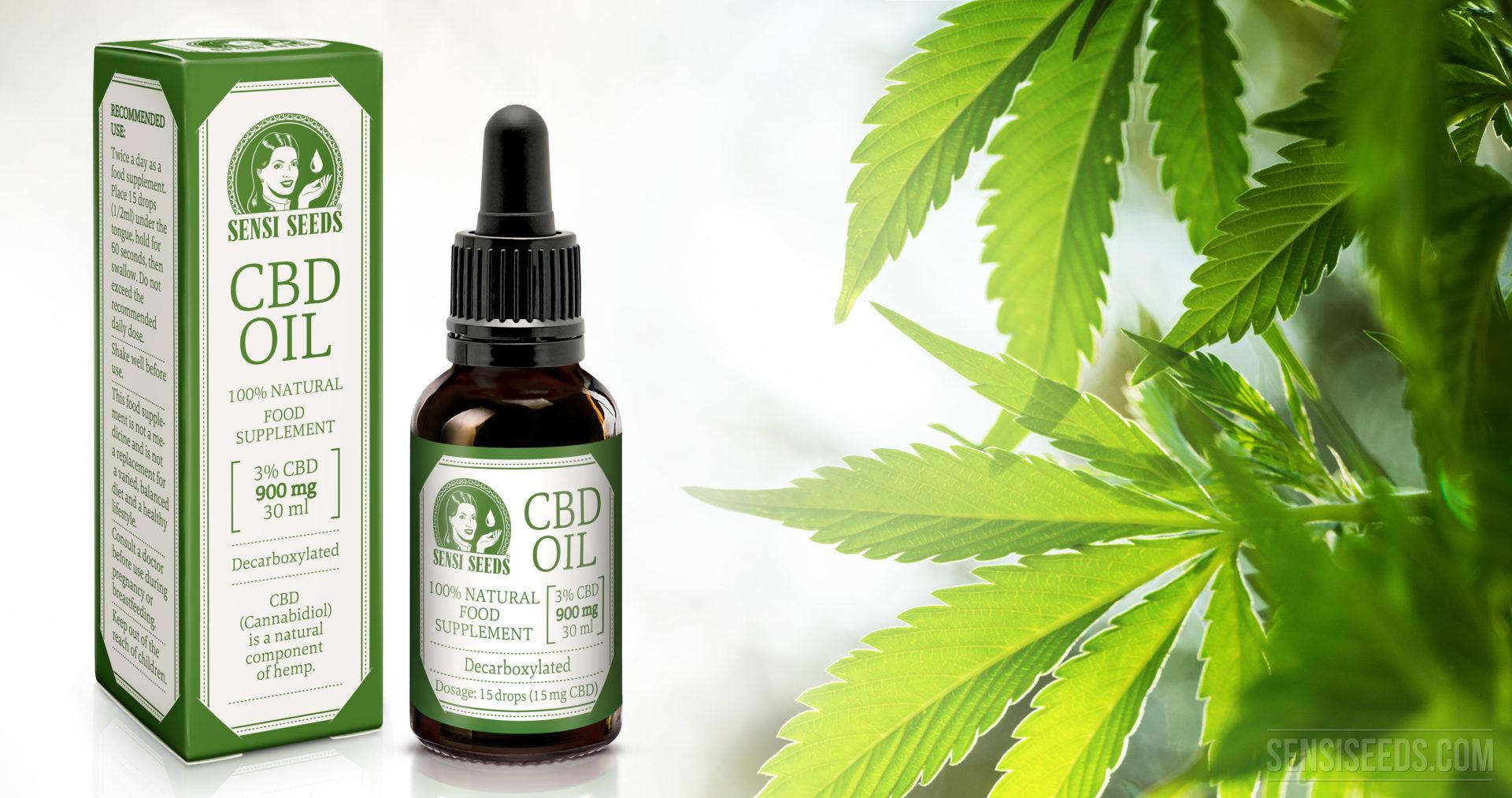 cannabidiol und cbd Öl sensi seeds blog