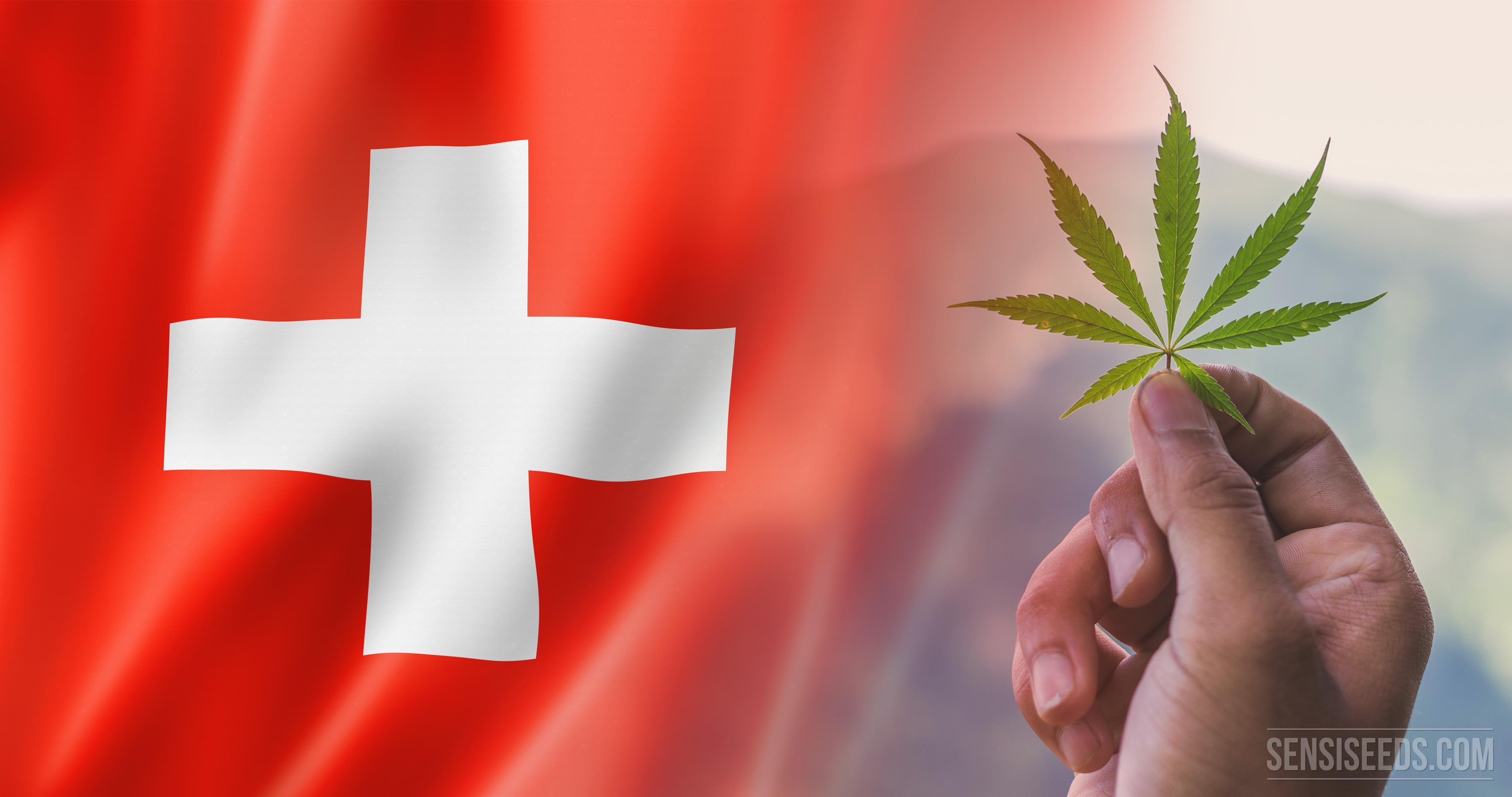 Legal status of cannabis in Austria