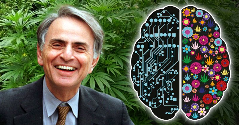 Carl Sagan, Cannabis, und die rechte Gehirnhälfte, Teil I