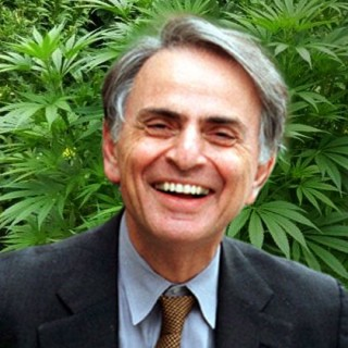 Benefits of Cannabis Use By Carl Sagan, Essay Excerpts