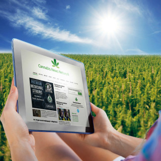 Sensi Seeds and online cannabis communities