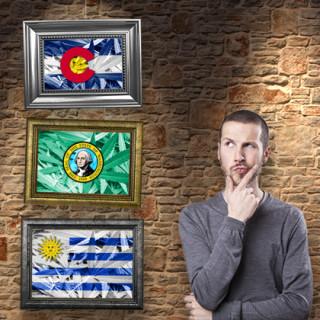 Colorado, Washington ou Uruguay – Quel modèle fonctionne le mieux?