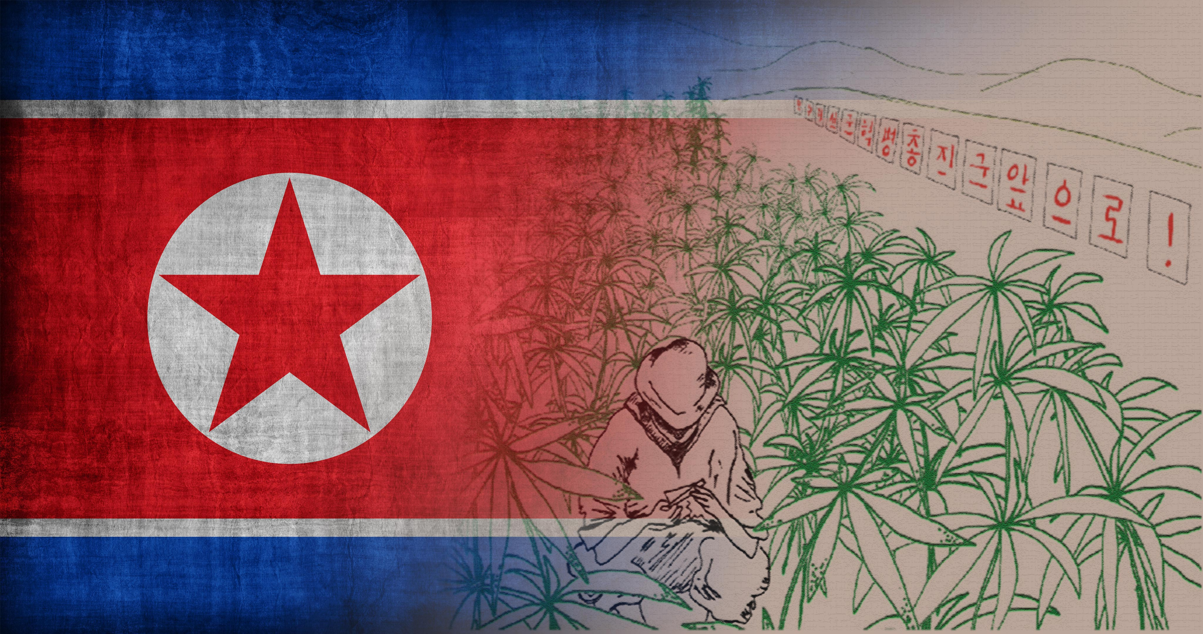 Cannabis in North Korea - Sensi Seeds Blog