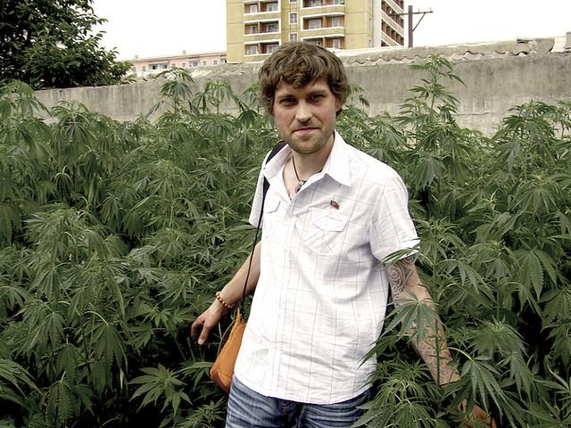 Cannabis poussant dans un jardin privé en Corée du Nord - Blog Sensi Seeds