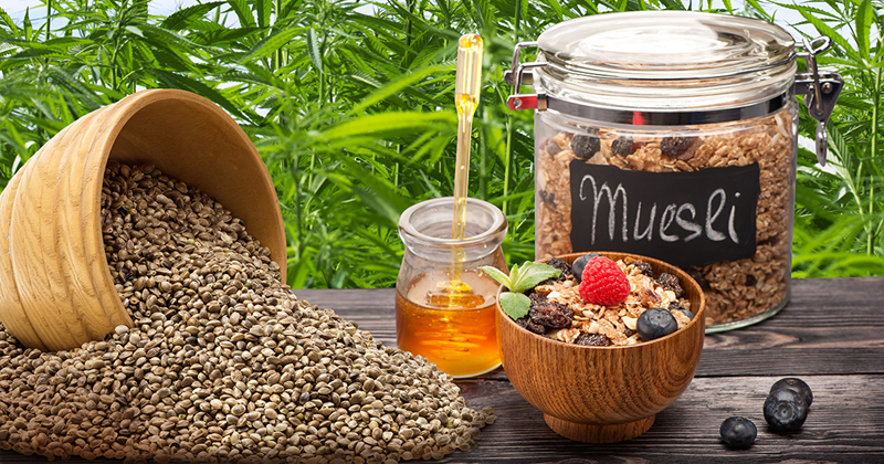 hemp muesli - Sensi Seeds blog
