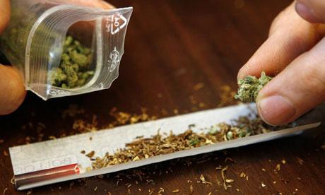 Cannabis in the Czech Republic - Sensi Seeds Blog