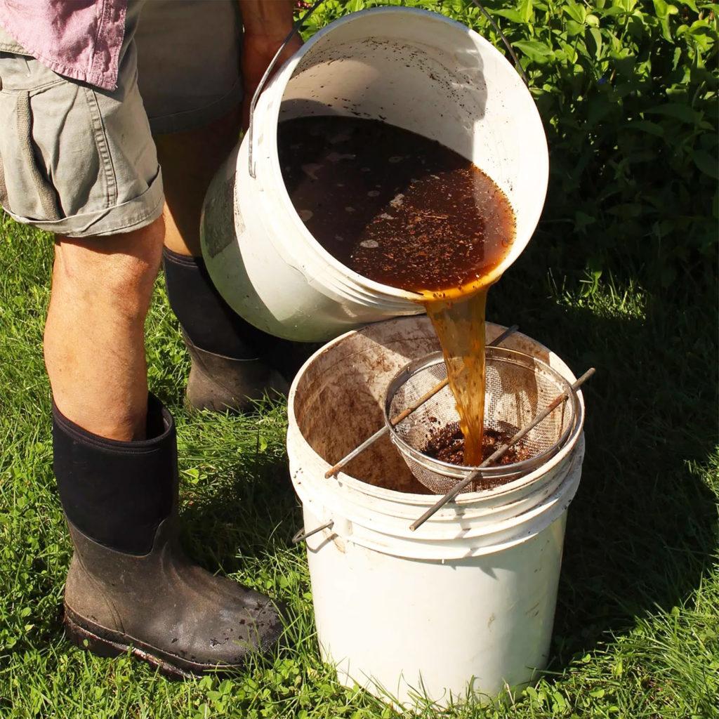 Lorsque votre thé prend une teinte brun foncé et dégage une odeur agréable, il est prêt