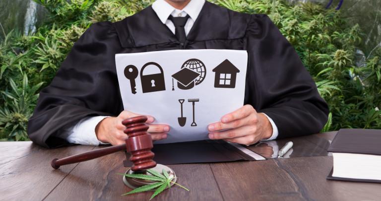 12 facteurs à considérer dans une opération de culture légale
