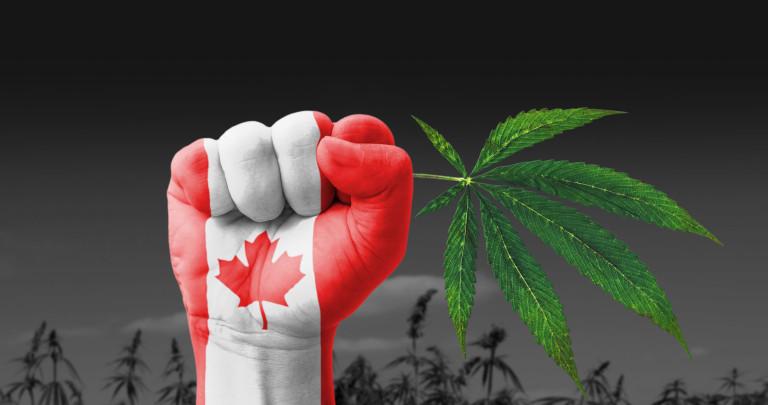 Le Canada en route vers la légalisation du cannabis