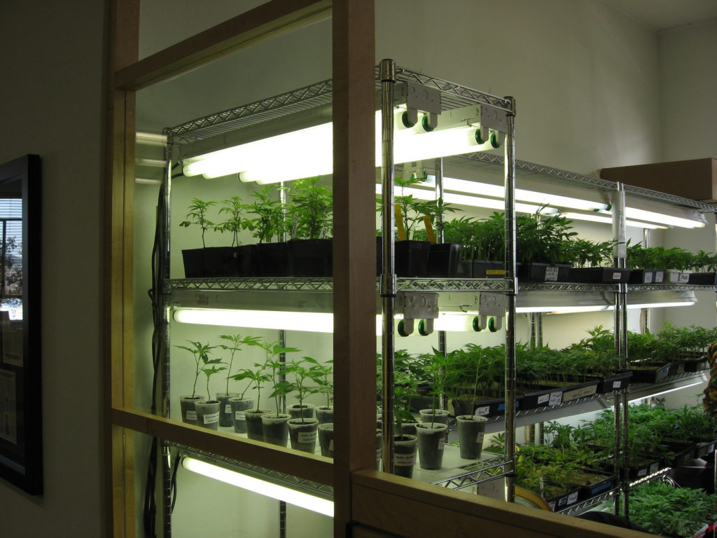 How to set up a high-quality clone room