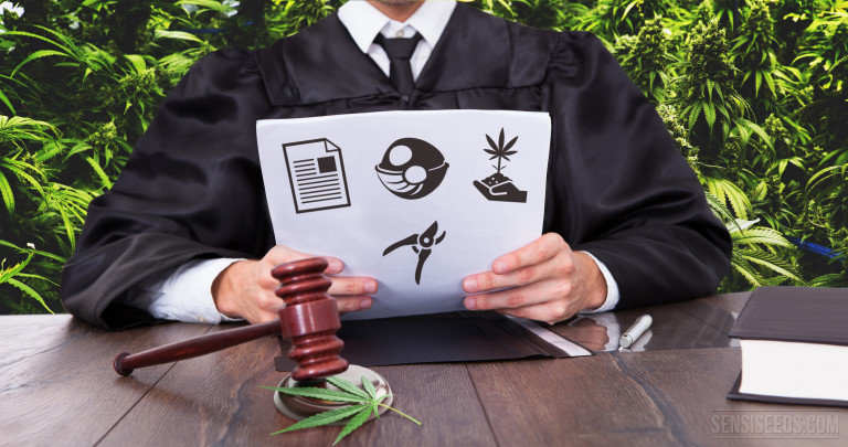 12 Points to Consider in a Legal Growing Operation – Part 2