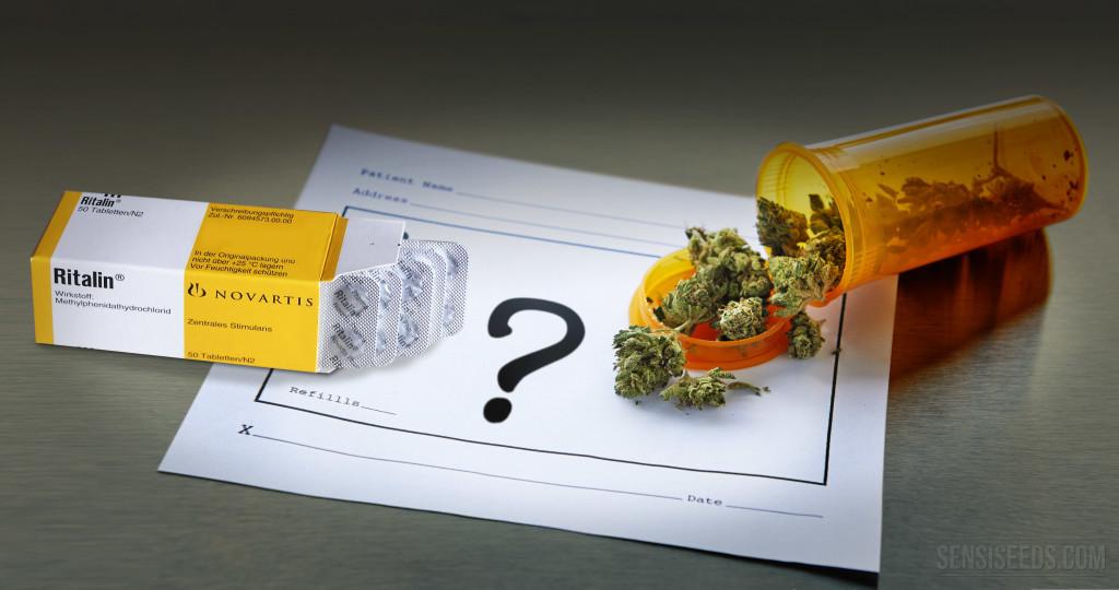 El TDAH y el Debate Cannabis vs RitalinSensi Seeds blog