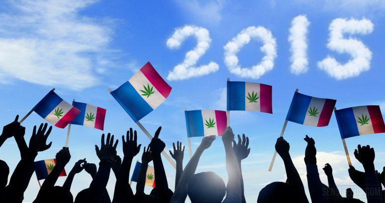 Cannabis in France – what happened in 2015?