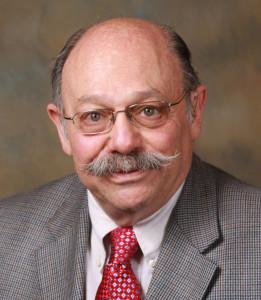 Dr David Bearman