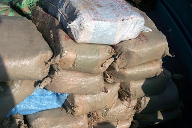 Der illegale Status von Haschisch macht es unmöglich, einen Fair Trade-Markt einzuführen (© Marion Doss)