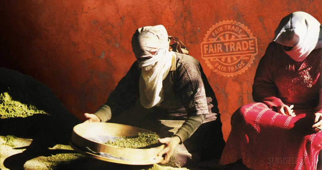 Fairer Handel mit Haschisch: Wie können wir ihn zustande bringen? - Sensi Seeds blog