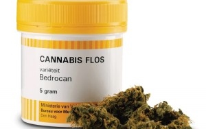 Photo of a yellow box of medicinal cannabis. It contains 5 grams of cannabis flos of the brand Bedrocan. On the right next to the box are the cannabis flowers.