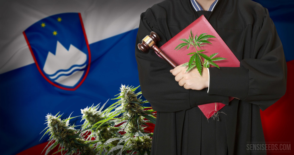 The legal status of cannabis in Slovenia - an overview