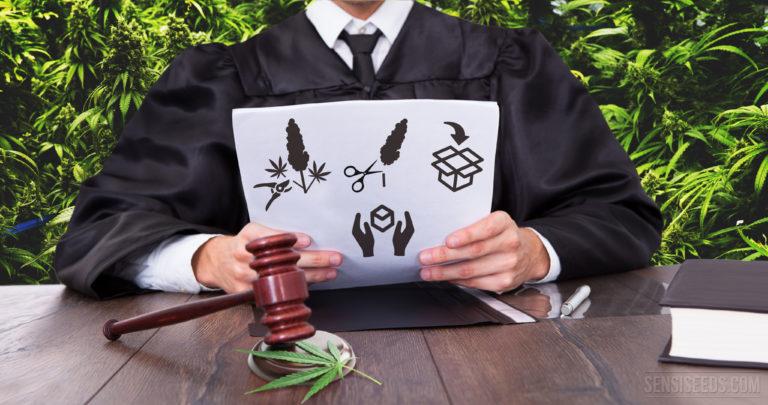 12 facteurs à considérer dans une opération de culture légale – partie 3