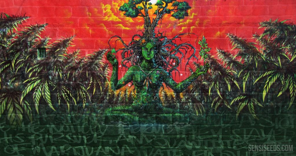 Sensi Seeds Cannabis Art Contest