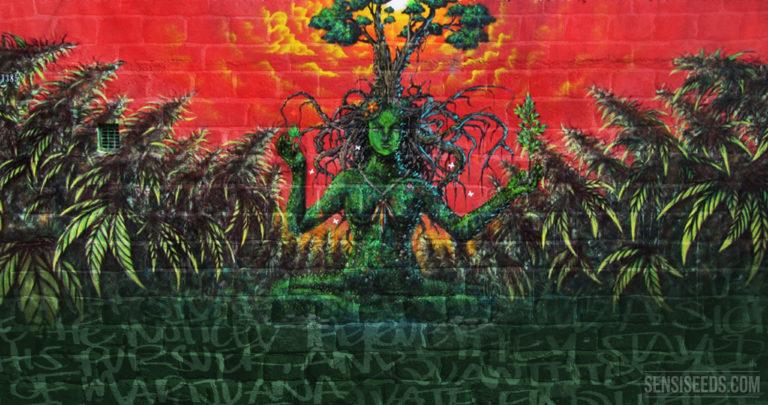 Coming up: Sensi Seeds Cannabis Art Contest