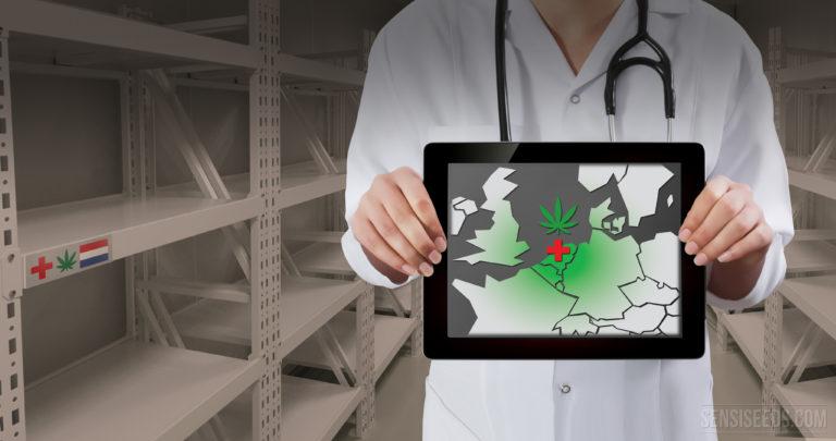 Les Pays-Bas ne peuvent à eux seuls assurer l'approvisionnement européen en cannabis médicinal