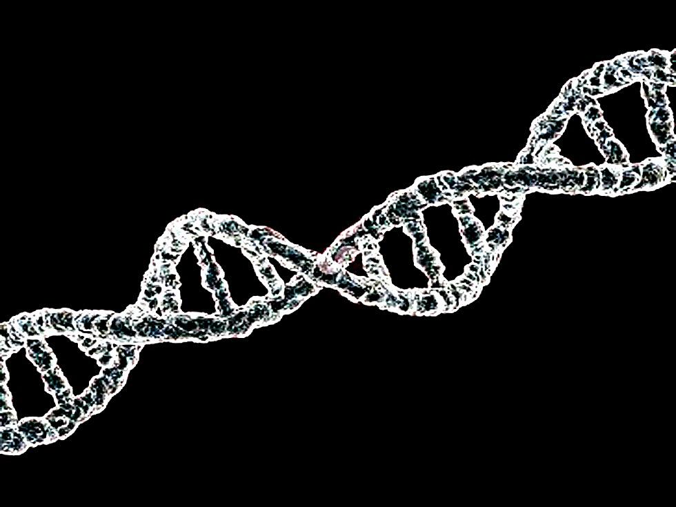 DNA-Sequenz (CC. Gabriel Andrés Trujillo Escobedo)